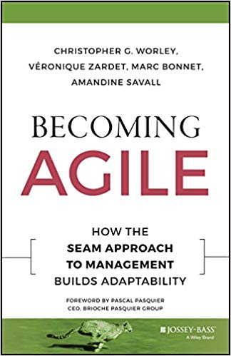 Becoming Agile : How To Seam Approach To Management Builds Adaptability
