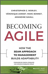 Image of Becoming Agile : How To Seam Approach To Management Builds Adaptability